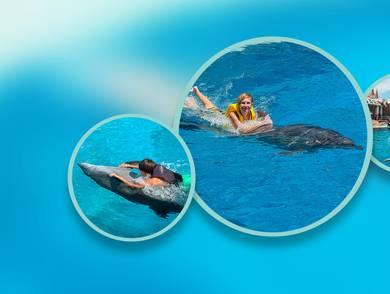 Yunuslarla Yüzme Paketi